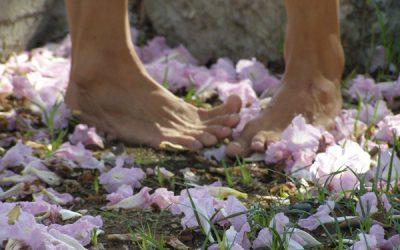 (io) las flores de Bayamo